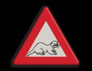 Informatiebord - waarschuwing  overstekende otter