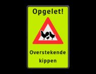 Verkeersbord - Opgelet! Overstekende kippen
