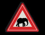 Informatiebord overstekende olifanten