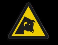 Pictogram W034 - Gevaar voor stieren