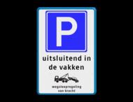 Parkeerbord RVV E04 + in de vakken + picto