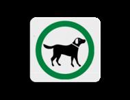 TBH Honden toegestaan 119x109mm - klasse 3