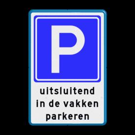 Parkeerbord RVV E04 + in de vakken