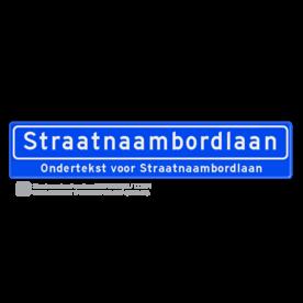 Straatnaambord 18 karakters 1000x200 mm + ondertekst NEN 1772 cadeau, kado, Straatnaam kado, eigen tekst op een bord, NEN1772, officieel straatnaam, ondertekst, relatiegeschenk, straatnaamborden