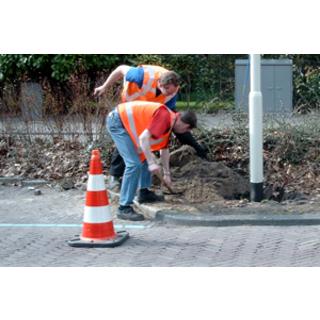 Plaatsing in losse teelaarde + straatwerk + betonmortel - op eigen terrein
