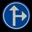 Verkeersbord België D03 - Verplichting één van de door de pijlen aangeduide richtingen te volgen.