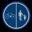 Verkeersbord België D09 - Deel van de openbare weg voorbehouden voor het verkeer van voetgangers, van fietsen en van tweewielige bromfietsen klasse A